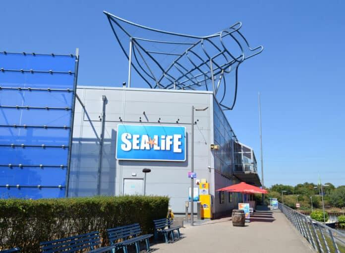 SEA-LIFE-Oberhausen